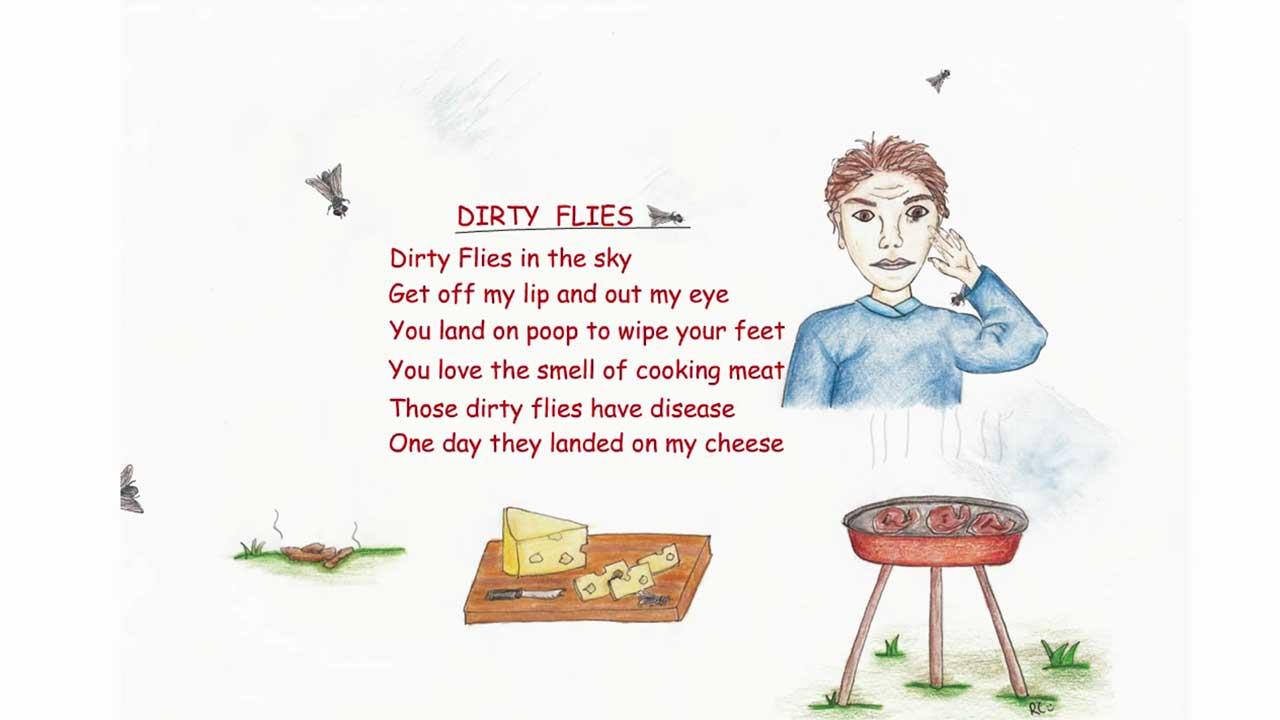 Dirty Flys