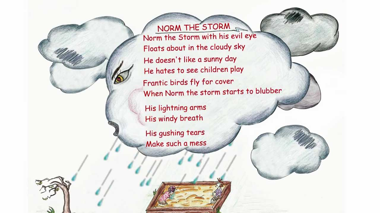 Norm The Storm